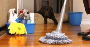 شركة تنظيف منازل بالظبية